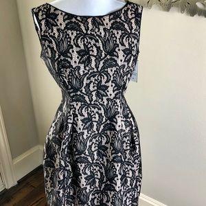 NWT Zara black and ivory lace print dress Large